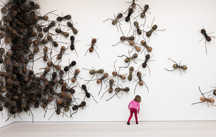 20140409080223_ants