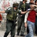 palestine  - ebron enfants_palestiniens_2_0