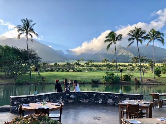 Photo Courtesy of Maui Tropical Plantation