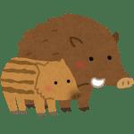 animal_inoshishi_oyako