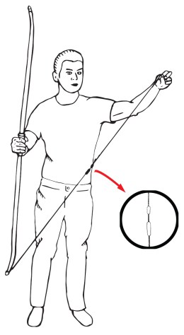 how to string a recurve bow - step 1: make sure the bowstring is the right way up