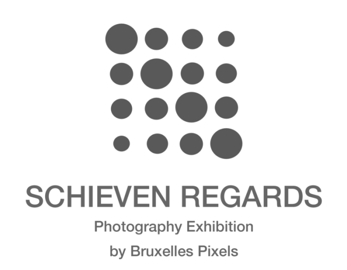 Bruxelles Pixels – « Schieven Regards » 2018