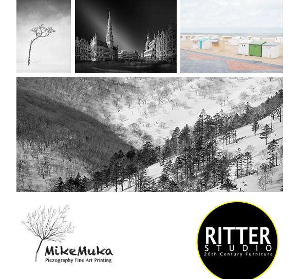 Sophie Voituron expose à la galerie «Ritter Studio»