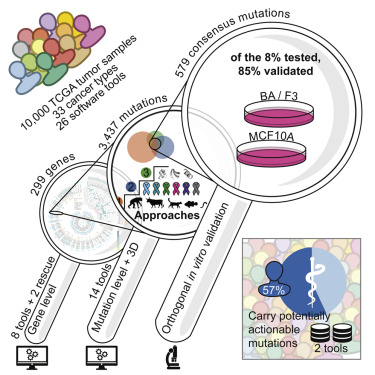 comprehensive characterization of cancer
