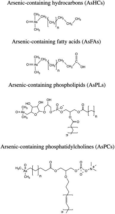 Lewis Dot Diagram For Arsenic : lewis, diagram, arsenic, Arsenic, Speciation, Analysis:, Review, Emphasis, Chromatographic, Separations, ScienceDirect