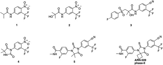 Structure of anti-androgen small molecules approved by FDA or in clinical ...