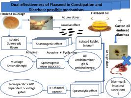 dual effectiveness of flaxseed