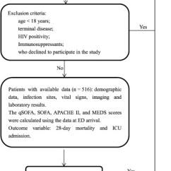 Modified Sofa Score Calculator Companies Near Me Predictive Performance Of Quick Sepsis Related Organ Failure Download Full Size Image