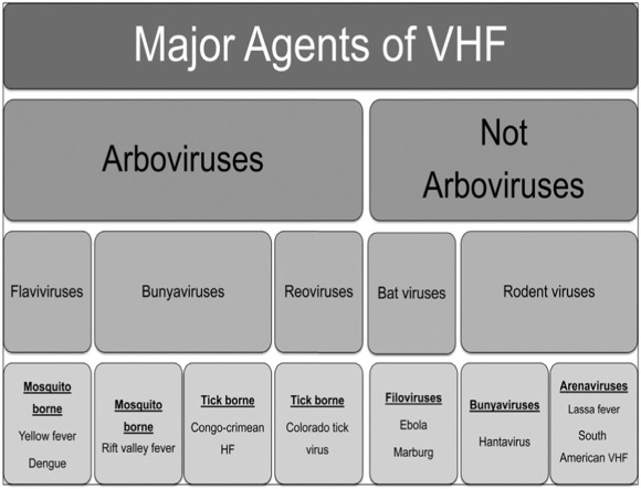 Viral hemorrhagic fever in the tropics: Report from the task force ...