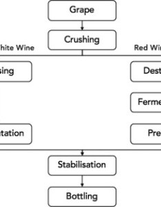 Download high res image kb also sustainable options for the utilization of solid residues from wine rh sciencedirect