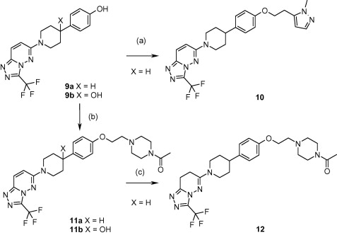 Synthesis of compounds 10, 11a–b, 12. Reagents and conditions: (a) ...