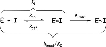 Kinetic mechanism for two-step covalent inhibition of EGFR.