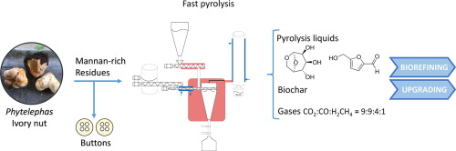fast pyrolysis of mannan