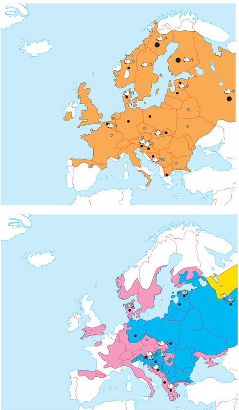 Hantavirus Infections in Europe - ScienceDirect