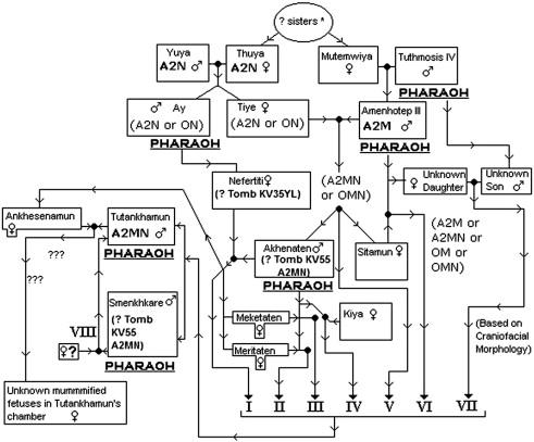 1977 dodge aspen wiring diagram 1977 dodge ramcharger Dodge Ram Wiring Diagram 1978 Dodge Power Wagon Wiring Diagram