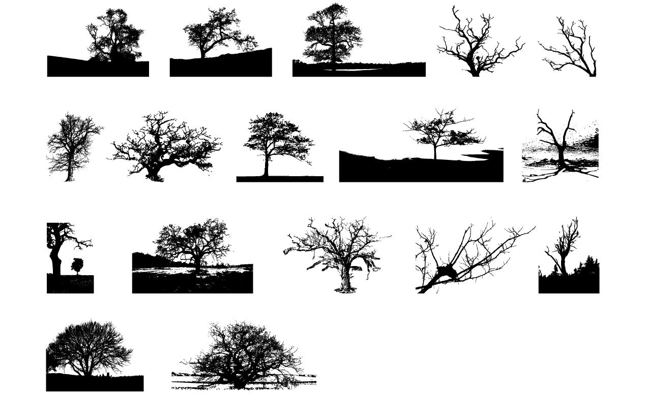 adobe illustrator tree vector