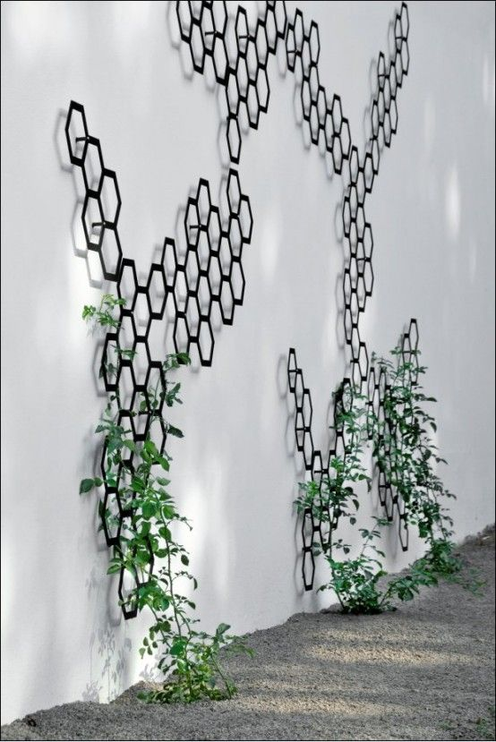 Honeycomb Inspired Interiors