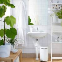 Spa Oasis: The 4 Best Shower Plants To Add to Your Bathroom + A Nifty Idea for the Commitment-Phobic Plant Lover
