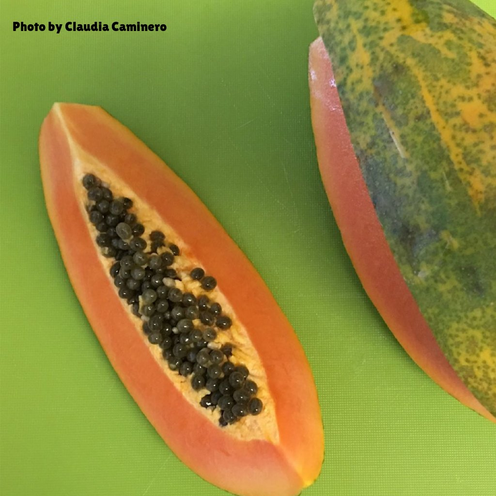LIST OF RECALLS - Salmonella Linked To Mexican Papayas