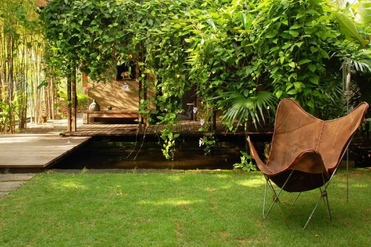 Variasi Taman belakang dengan pohon bambu