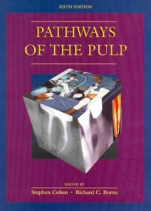 Pathways Of The Pulp 6th Edition PDF