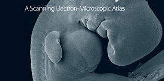 The Anatomy of the Human Embryo PDF