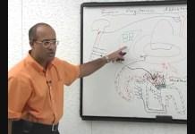 Renin Angiotensin Aldosterone System 3