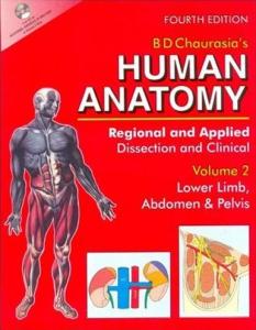 BD Chaurasia's Human Anatomy 4th Edition Volume 2 PDF