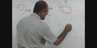 Cardiac Cycle - Systole & Diastole 3