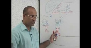 Complement System - Immunology - Part 2