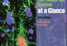 The Endocrine System at a Glance 3rd Edition PDF