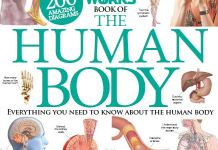 How It Works Book Of The Human Body PDF