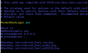 How To Enable Root SSH On Ubuntu and CentOS