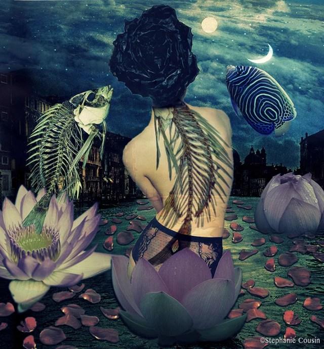 Anicca by Stéphanie Cousin