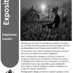 Stéphanie Cousin - Digital Art - Exhibition at the CERN April 2018