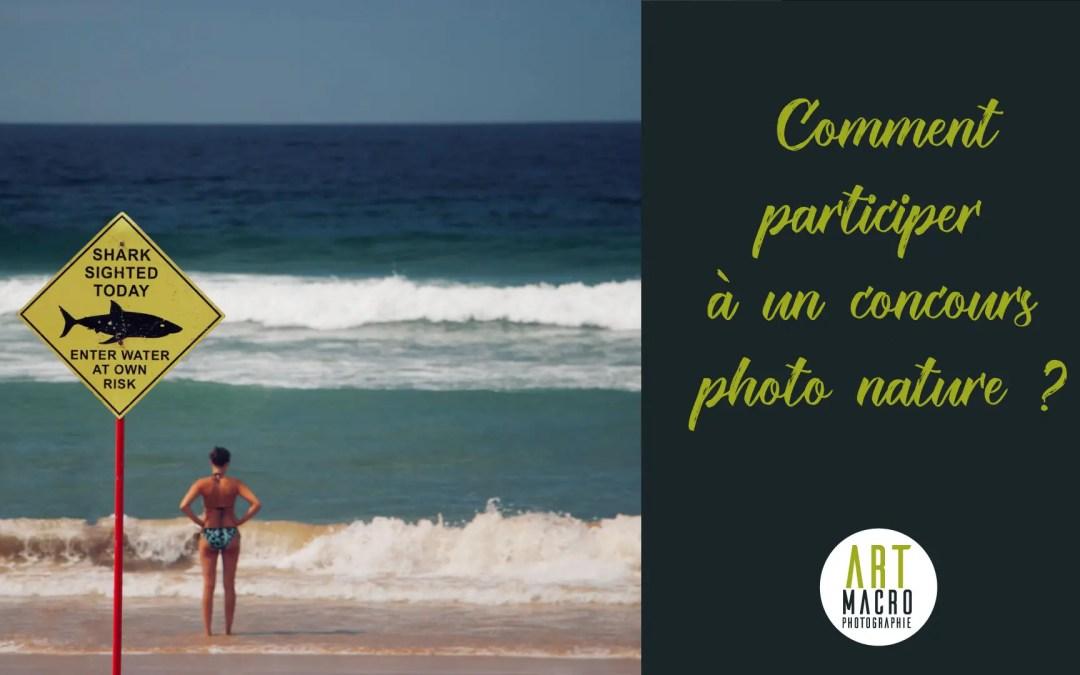 Comment participer à un concours photo nature et animalier