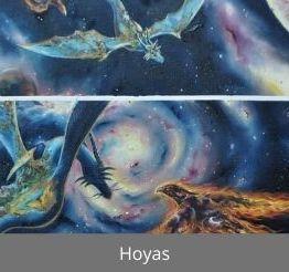 Mars : Hoyas