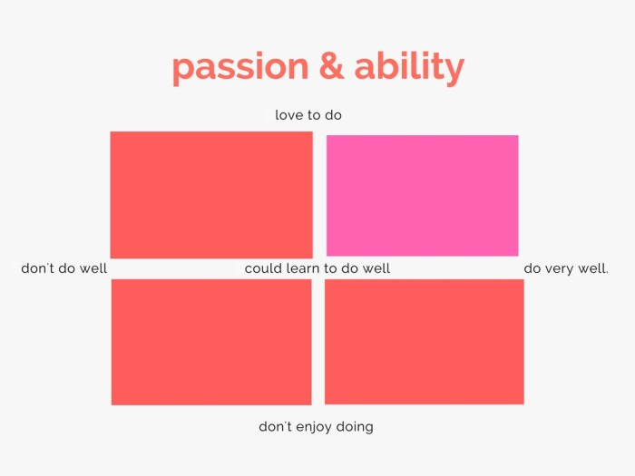 copy-of-passion-ability-chart