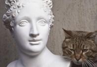 La Paolina di Canova e il gatto