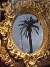 Palma nello specchio di una vetrina
