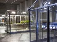 Le tre strutture in vetro e alluminio di Michael Wang con luci artificiali per esporre specie estinte in natura
