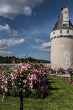 Il torrione del Castello di Rivau con un giardino di rose