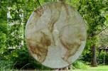Castello di Clos Luce-Amboise La bellezza dei corpi - Leonardo studia l'anatomia umana e animale le vene, i muscoli per rendere meglio in pittura la realtà dei corpi
