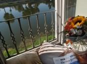 Risveglio sull'Arno
