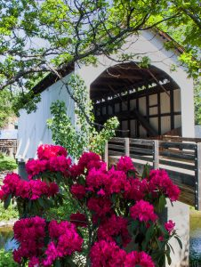 New Beginnings: Eagle Point Covered Bridge, Image by Tom Ommen