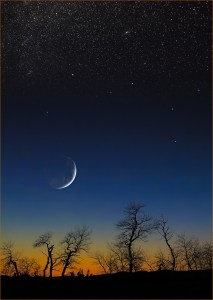 Celestial Journeys: Night Descending, original image by Vivian McAleavey