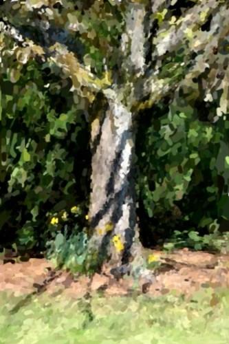 Oil_canvas_tree