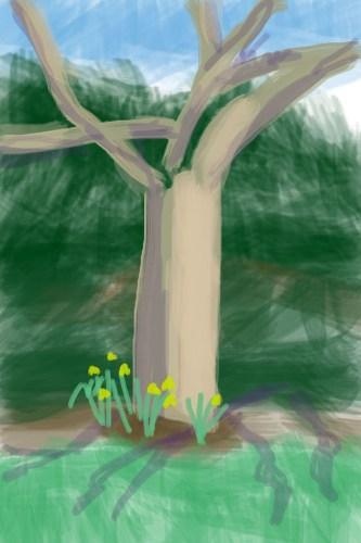 Treesketch-6x