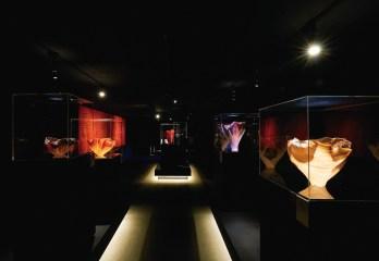 Why Glass & Toots Zynsky ──美國玻璃藝術天后TOOTS旋風襲台