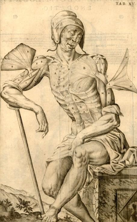 "Giulio Cesare Casseri, ""Tabulae anatomicae"" (detail), 1627"